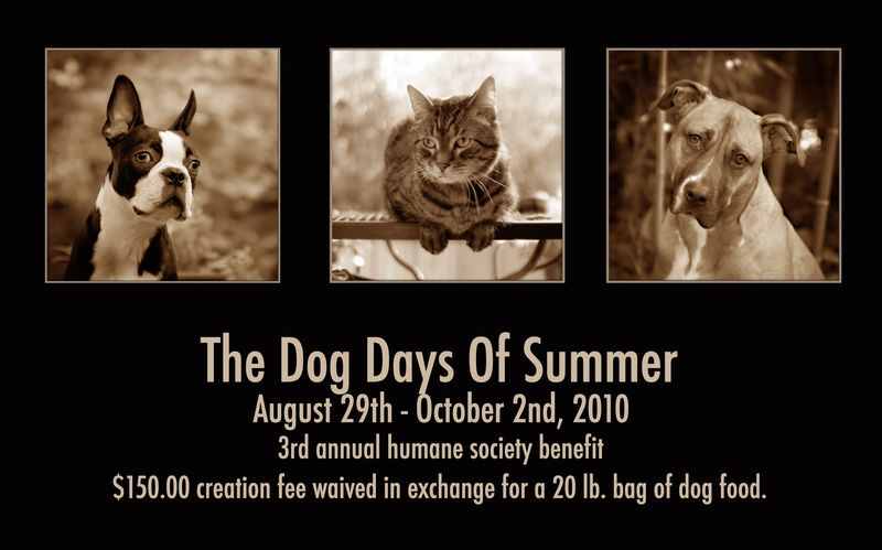 Dogdays2010blogpic